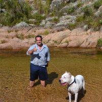 Dogo Argentino with man in a river